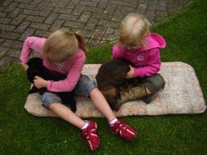 Spelen op de grond, dan kan de pup ook niet vallen